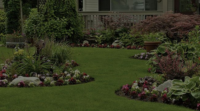 Fishers Landscape Design